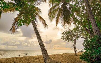 Conseils pour partir en Martinique pas cher