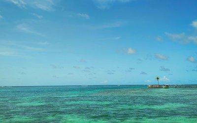 Meilleures activités «Tripadvisor» Martinique 2020-2021